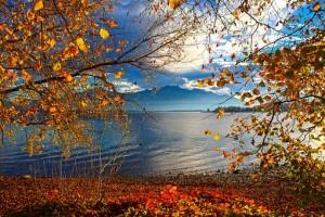 lake-3811555__340